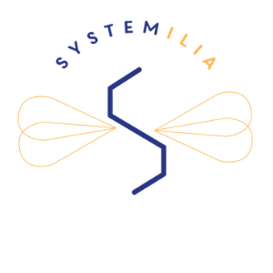 Systemilia : audit du site web et campagne LinkedIn